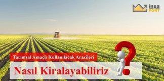 Tarımsal Amaçlı Kullanılacak Arazileri Nasıl Kiralayabiliriz